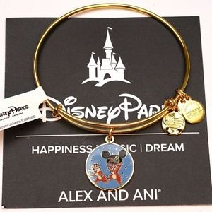 Alex And Ani 2018 Chip And Dale Gold Bangle